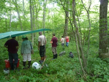 mothstudy-woodlandsite-jalbert